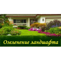 Озеленение Ландшафта
